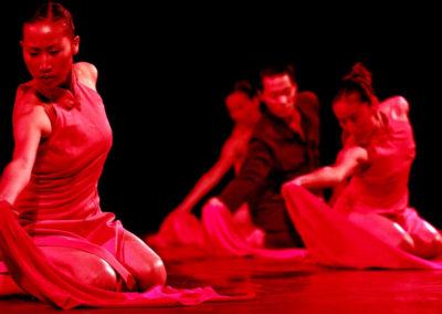 Premio Prospettiva danza e teatro padova - 3